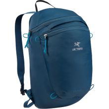 Index 15 Backpack in Iowa City, IA