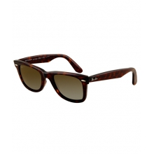 - Original Wayfarer Polarized