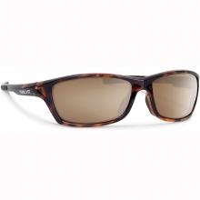 Forecast Chet Sunglasses in Pocatello, ID