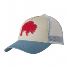 Bison Patch Trucker Cap
