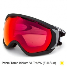 Canopy PRIZM Snow Goggle by Oakley