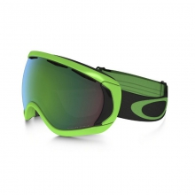 Canopy Snow Goggles