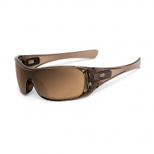 Antix Polarized Sunglasses