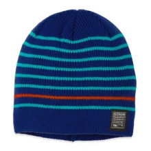 Credence Beanie