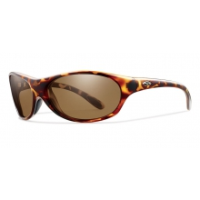 GUIDES CHOICE - POLARIZED BROWN LENS by Smith Optics in Tampa Fl