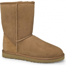 Classic Short Boot Womens - Chestnut 8 by Ugg Australia
