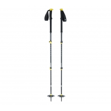 Expedition 3 Ski Poles