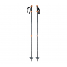 Traverse Ski Poles by Black Diamond in Squamish Bc