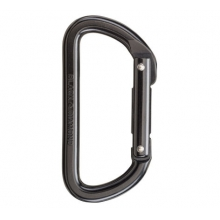 Light D Carabiner by Black Diamond in Asheville Nc