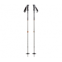 Traverse Ski Poles by Black Diamond in Park City Ut
