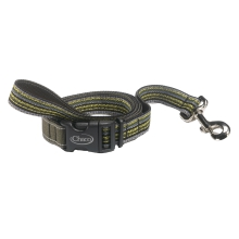 Dog Leash by Chaco in Dawsonville GA