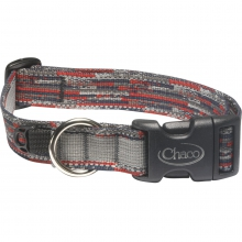 Dog Collar by Chaco in Champaign Il
