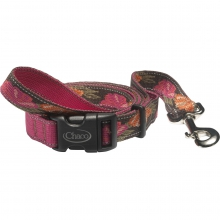 Dog Leash by Chaco in State College Pa