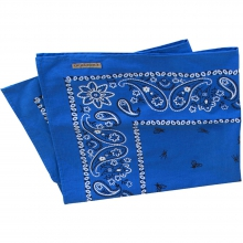 Bugsaway Paisley Bandana by ExOfficio in Columbia Sc