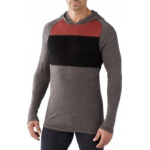 Men's NTS Mid 250 Color Block Hoody by Smartwool