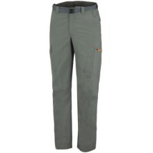 Men's Silver Ridge Cargo Pant by Columbia in Cimarron Nm