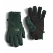 Women's Denali Thermal Etip Glove by The North Face in Nashville Tn