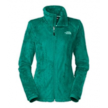 Women's Osito 2 Jacket by The North Face in Tampa Fl