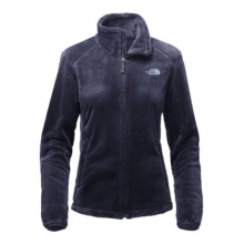 Women's Osito 2 Jacket by The North Face in Champaign Il