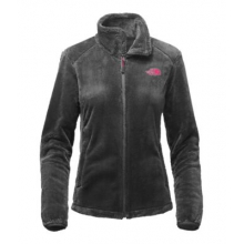 Women's Osito 2 Jacket by The North Face in Clinton Township Mi