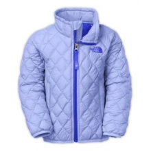 Todd G ThermoBall Full Zip Jacket by The North Face in Wakefield Ri