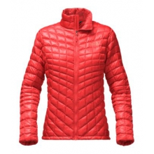 Women's Thermoball Full Zip Jacket by The North Face in Tampa Fl