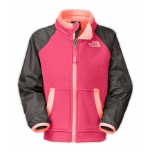 Toddler Girl's Silver Skye Track Jacket by The North Face in Succasunna Nj