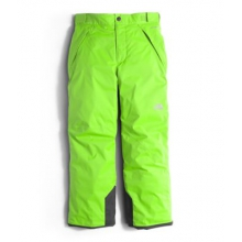 Boy's Freedom Insulated Pant by The North Face