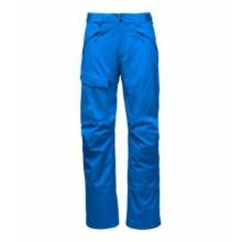 Men's Freedom Insulated Pant by The North Face in Brighton Mi