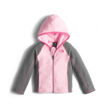 Toddler's Glacier Full Zip Hoodie by The North Face in Charleston Sc