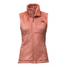 Women's Osito Vest by The North Face in Evanston Il