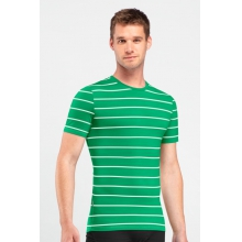 Mens Anatomica SS Crewe Stripe by Icebreaker in Succasunna Nj