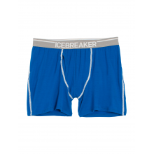 Men's Anatomica Boxers w Fly by Icebreaker in Covington La
