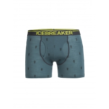 Men's Anatomica Boxers w Fly Arena by Icebreaker