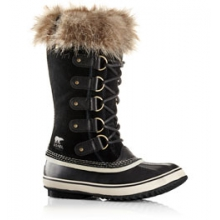 Joan of Arctic 16 Winter Boot - Women's
