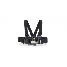 Junior Chest Harness in Solana Beach, CA