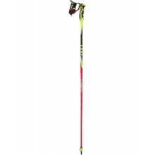 Venom GS Race Pole