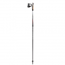 Instructor Nordic Walking Poles
