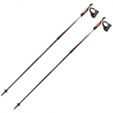 Instructor Nordic Walking Pole