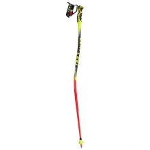 Worldcup Lite GS Trigger S Race Poles - Kids'