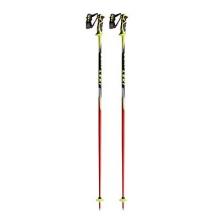 World Cup Trigger SL Ski Poles 2016
