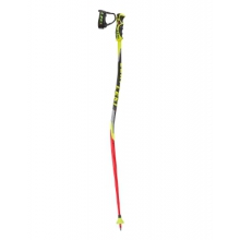 Worldcup Lite GS Trigger S Race Pole - Kids'