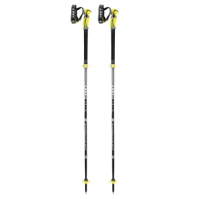 Alpine Stick S Vario Carbon Ski Poles 2017
