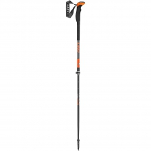 Aergonlite 2 Carbon Backcountry Poles by Leki