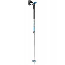 Aergonlite 2 V Ski Pole