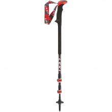Carbon TI Trekking Poles
