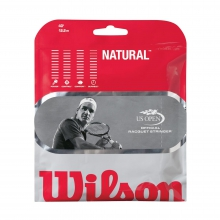 Natural Gut Tennis String by Wilson in Ames Ia