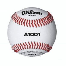 A1001 Baseball by Wilson in Ames Ia