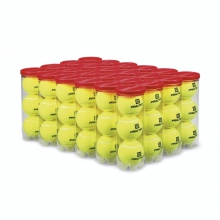 PRACTICE BALLS - YELLOW, ALL COURT TYPES, 24 CAN CASE (72 BALLS) by Wilson