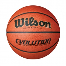 "Evolution Game Basketball (29.5"") by Wilson in Logan Ut"